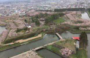 1泊2日の函館グルメ旅 桜の五稜郭タワーへ 朝市とラッキーピエロ&ジェラード