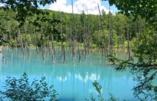 まさに絶景 ~白金青い池~